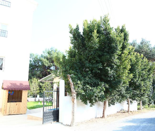 Özel Mersin Bahar Huzurevi ve Yaşlı Bakım Merkezi